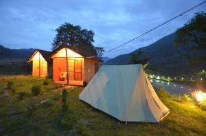 mango-tree-nepal-tentcamping