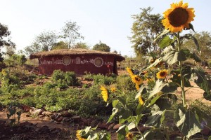 The Art of Living Permaculture site, Bangalore, India