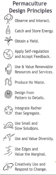 Holmgren design principles