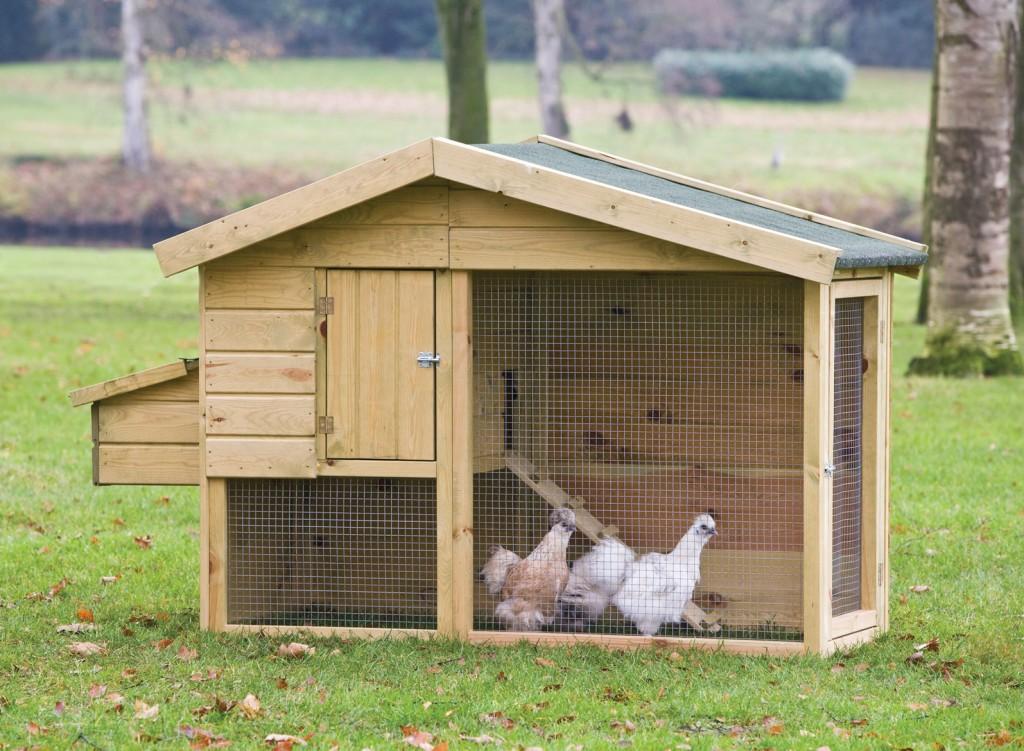 курятник на три курицы прожить неделю зарплаты