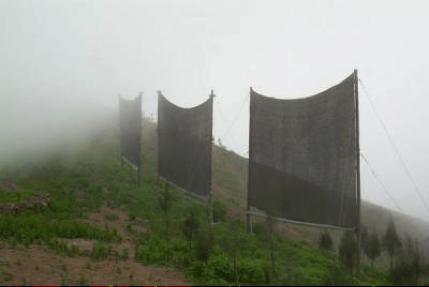 fog-nets-cape-verde