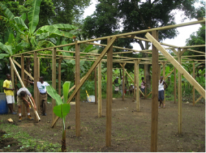 haiti-greenhouse1