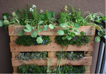 palette-herb-garden