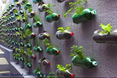 plastic-bottle-garden-wall